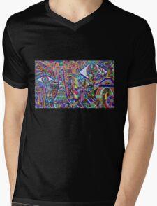 Sydney Park Mens V-Neck T-Shirt