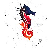 Sea Horse Photographic Print