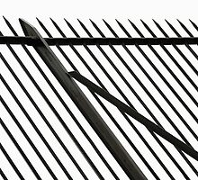 Pointed Railing Oblique by Colin S Pearson