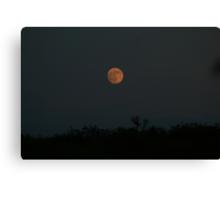 Darken Thy Moon Canvas Print