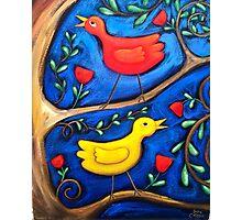 PASAREA  MAIASTRA 2  ( MIRACULOUS  BIRD  2 ) Photographic Print
