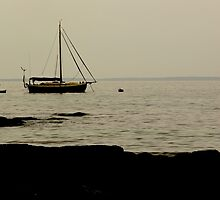 Jervis Bay NSW by D-GaP