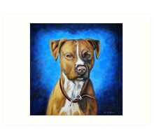 'Angel in Blue' - American Staffordshire Terrier Art Print
