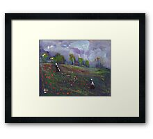 Poppies in a field Framed Print