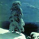 In The Wild North by Jenn Kellar
