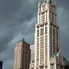 Stormy Woolworth by Louis Galli