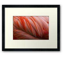 Flamingo abstract....... Framed Print