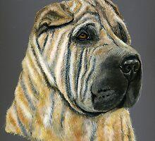 Kruger - Shar-Pei by thatdogshop
