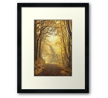 Beautiful Fall Framed Print
