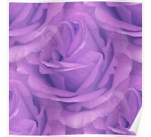 Seamless Purple Rose Vector Poster