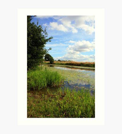 www.lizgarnett.com - Royal Military Canal, Appledore Art Print
