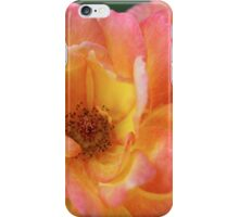 Summer rose in delicious sherbet colors iPhone Case/Skin