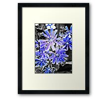Angels Series - The blue crowd Framed Print