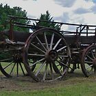 Wagon by Liz Worth