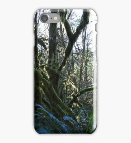 wet forests iPhone Case/Skin