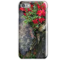 sidewalk attraction iPhone Case/Skin