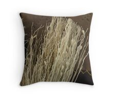 Marble Festival broom and quiltfabric Throw Pillow