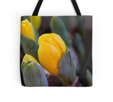 hyacinth in the garden Tote Bag