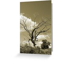 The Old Tree- Sepia tones Greeting Card