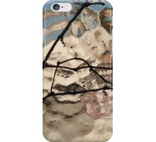 Buenos Aires colors and geometries II iPhone Case/Skin