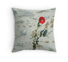 www.lizgarnett.com - Hibiscus on Wall Throw Pillow