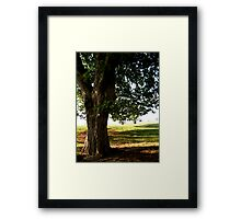Strong Tree Framed Print