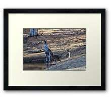 Mob At The Old Mill Dam Framed Print
