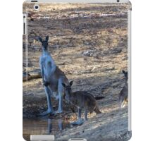 Mob At The Old Mill Dam iPad Case/Skin