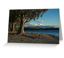 Trees by the lake Greeting Card