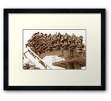 Fun on the Medusa—the world's first floorless coaster Framed Print