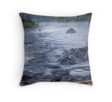 Styx River, NSW Throw Pillow