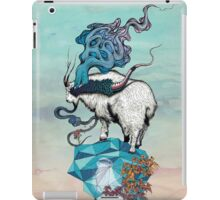Seeking New Heights iPad Case/Skin