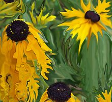 crazy black eyed susans by Michelle BarlondSmith