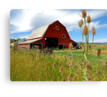 Barn & Thistle Canvas Print