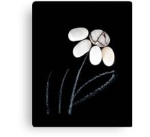 pebble flower  Canvas Print