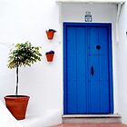 The blue door, Andalucia by Fred Shively