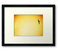 Bird Mad Girl Framed Print