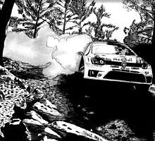 Polo R WRC - Drifting into the Wild by ShinjiRHCP