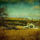 Rustic, Uralla, New South Wales, Australia by Kitsmumma