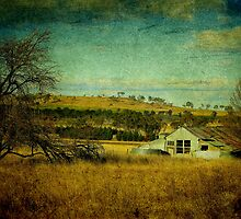 Rustic, Uralla, New South Wales, Australia by Kitsmumma