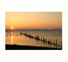 Sunset Stabs 1 Art Print