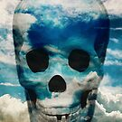 sky skull by seamless