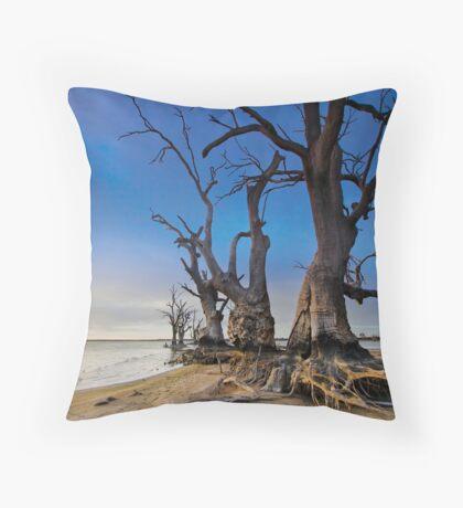 Lake Bonney - Early Morning Throw Pillow