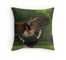 Master of the Air Throw Pillow