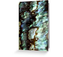 Paua Shell from New Zealand Greeting Card