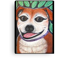 Gracie May Staffy under the lime tree Canvas Print