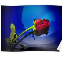 Dynamic Red Rose with Blue Background Poster