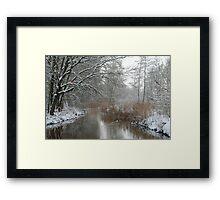 Winter in my backyard Framed Print