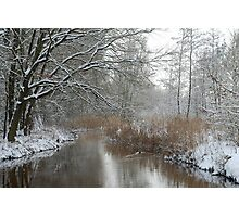 Winter in my backyard Photographic Print