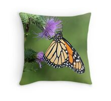 Monarch on a Thistle Throw Pillow